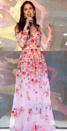 Katrina Kaif White Net Gown