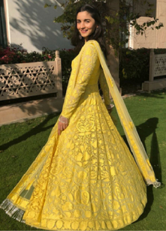 Similar like Alia Bhatt Yellow Net Thread Designer Gown