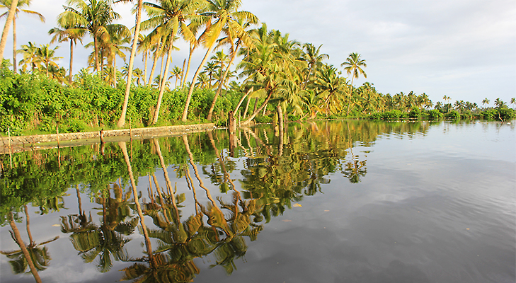 The Kerala Backwaters - 5 Places You Should Visit in 2014 @TheRoyaleIndia