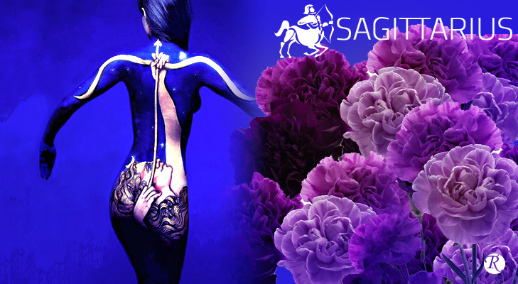 Carnations for Sagittarius Zodiac sign @TheRoyaleIndia