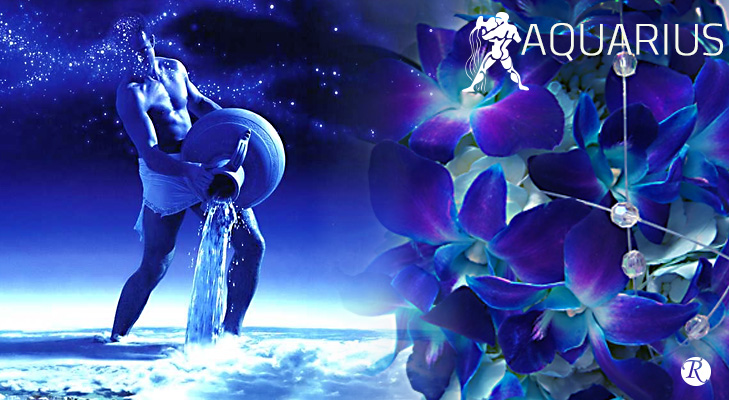 Orchid for Aquarius Zodiac Sign @TheRoyaleIndia