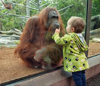 san diego zoo @TheRoyaleIndia
