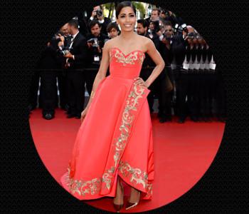 Freida Pinto wearing Oscar de La Renta'S Fall collection @TheRoyaleIndia