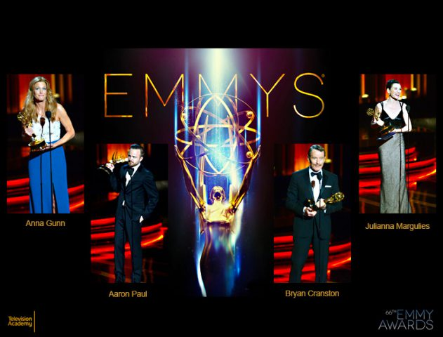 66th emmy awards 2014 @TheRoyaleIndia