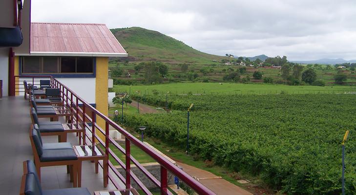 sula vineyard @TheRoyaleIndia