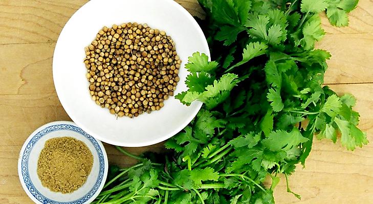 organic coriander @TheRoyaleIndia