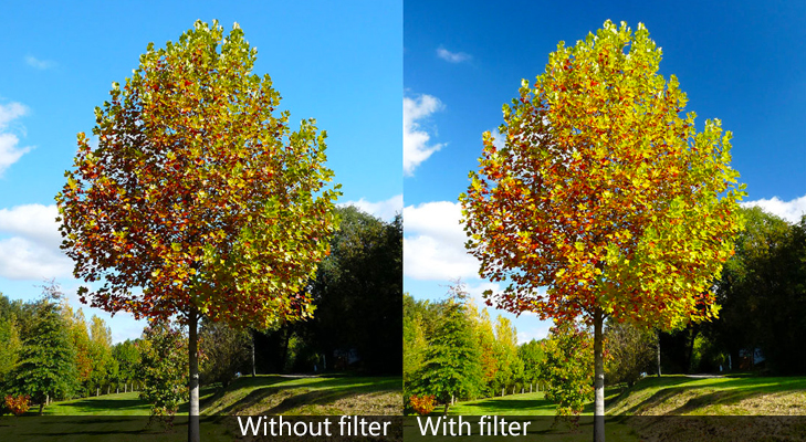 polarizing filter for camera @TheRoyaleIndia