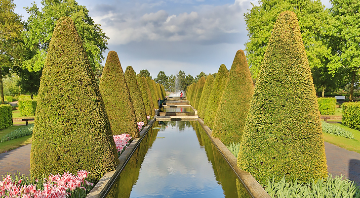 garden @TheRoyaleIndia