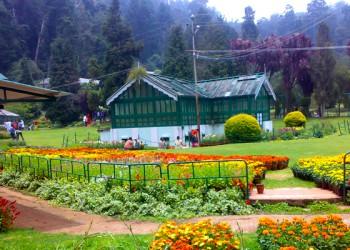 ooty botanical gardens @TheRoyaleIndia