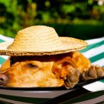 Pet Friendly Travel Locations in India