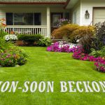 YOU ARE 10 STEPS AWAY FROM HAVING A BEAUTIFUL GARDEN THIS MONSOON