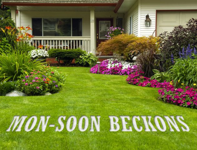 Monsoon gardening tips the royale for Gardening tips