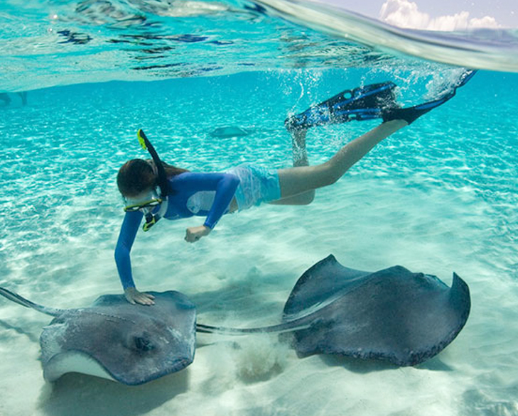 shallow diving in cayman islands @TheRoyaleIndia