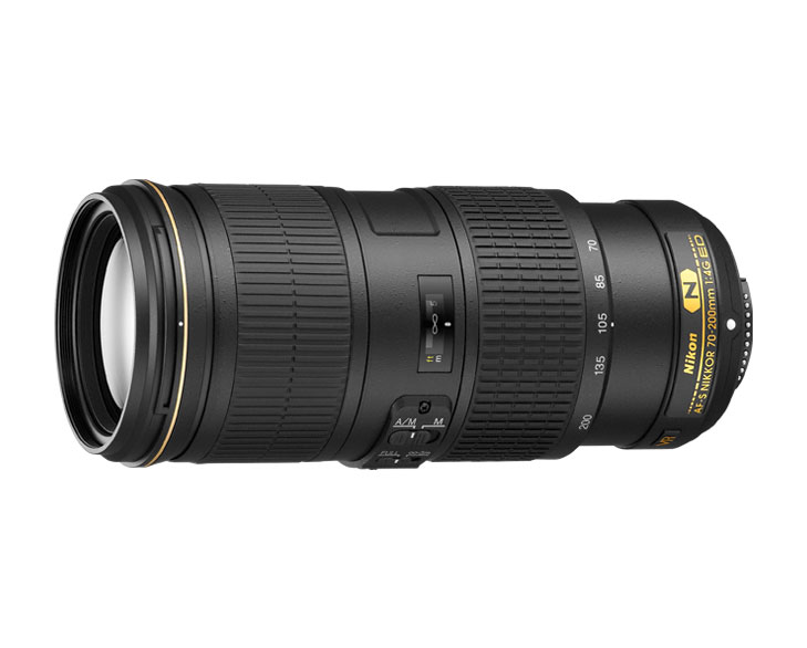 best wilfdlife photography lenses @TheRoyaleIndia
