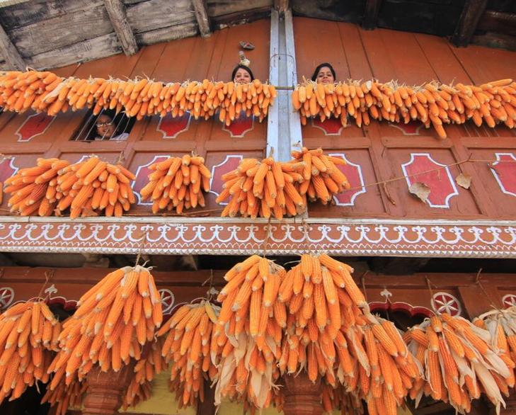 bhatoli village mussoorie @TheRoyaleIndia