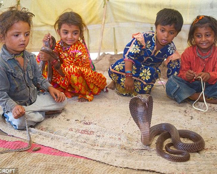 Shetaphal snake village @TheRoyaleIndia