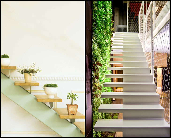 Staircase plants @TheRoyaleIndia