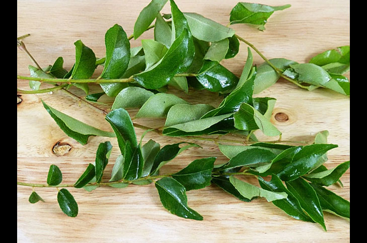 Curry leaves empty stomach weight loss @TheRoyaleIndia