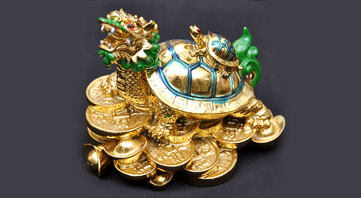 Feng shui gift dragon head turtle @TheRoyaleIndia