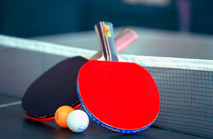 Table tennis hindi translation @TheRoyaleIndia