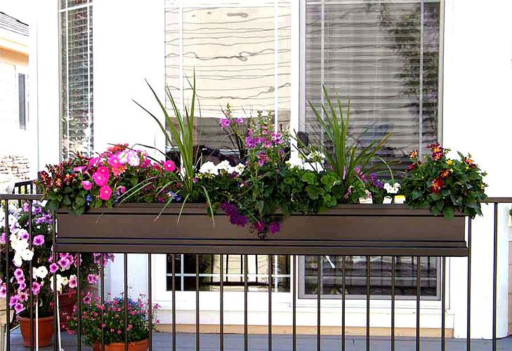 Balcony garden tips railing planters @TheRoyaleIndia
