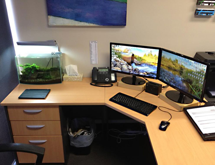 feng shui my office. Feng Shui Tips Office Small Aquarium Desk @TheRoyaleIndia My