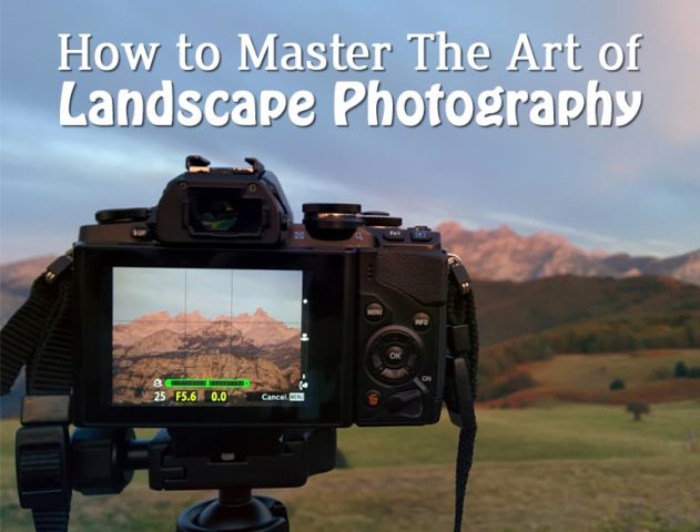 Landscape Photography tips @TheRoyaleIndia