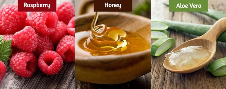 Raspberry honey aloe vera dark lips remedy
