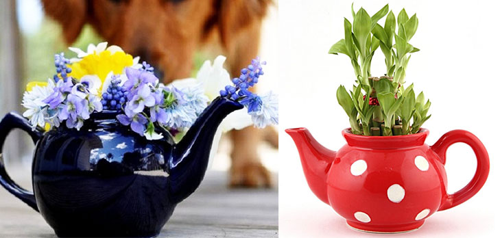Tea pot decor ideas planters