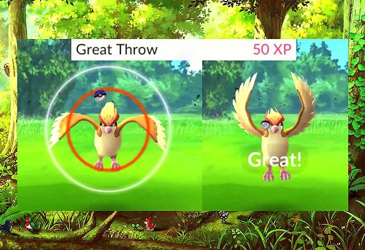 Pokemon go pokeball perfect @TheRoyaleIndia