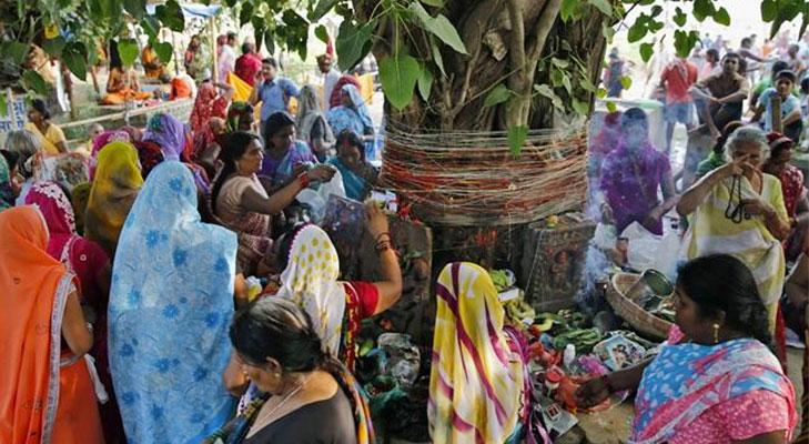 worshipping peepal tree @TheRoyaleIndia