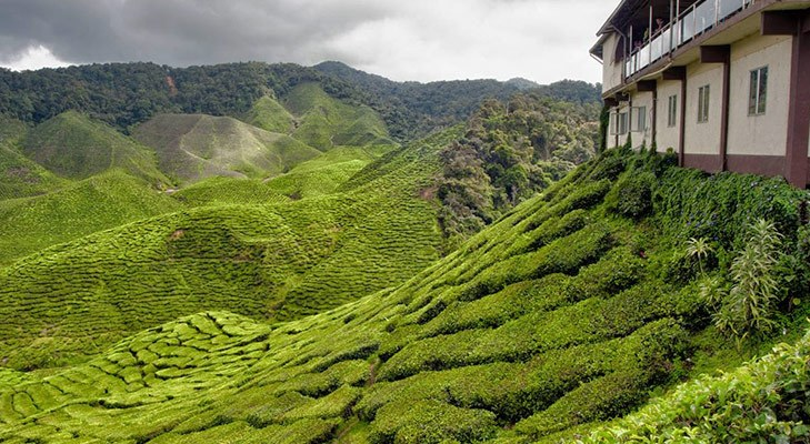 Cameron Heights in Malaysia @TheRoyaleIndia