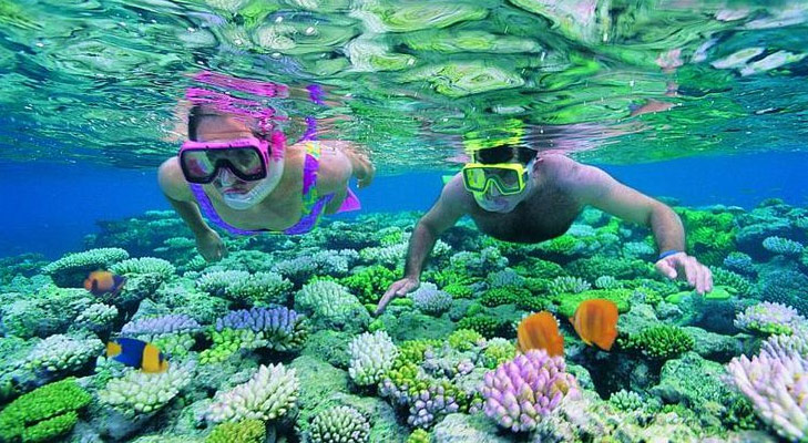 Cruise Snorkel Expedition @TheRoyaleIndia