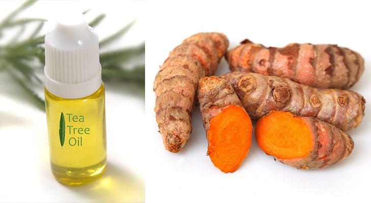 Japanese beauty secrets tea tree oil raw turmeric for acne