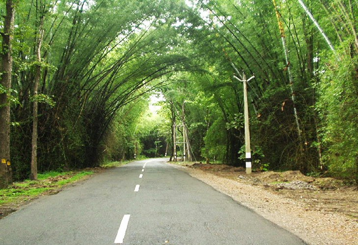 Romantic Roadtrip Kozhikode to Kollegal @TheRoyaleIndia