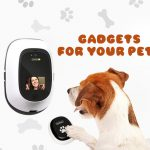 6 Best Gadgets for your Pets