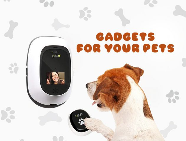 Best Gadgets for your Pets