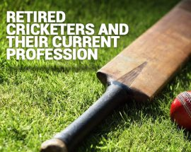 Retired Cricketer Current Profession
